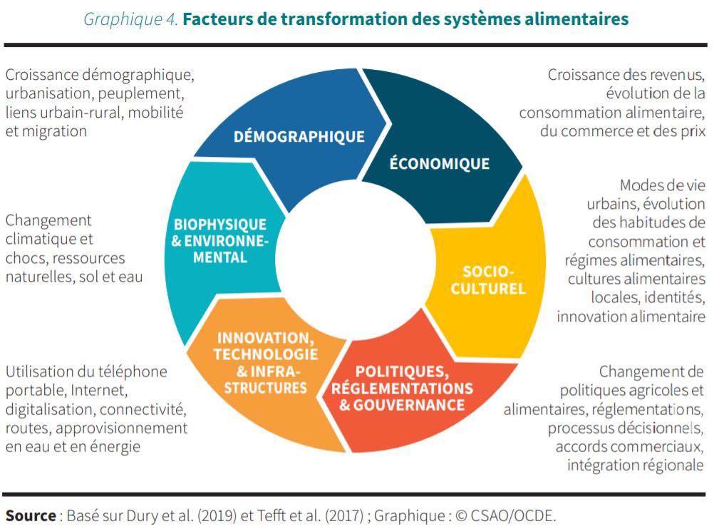 Les facteurs de transformation des systèmes alimentaires