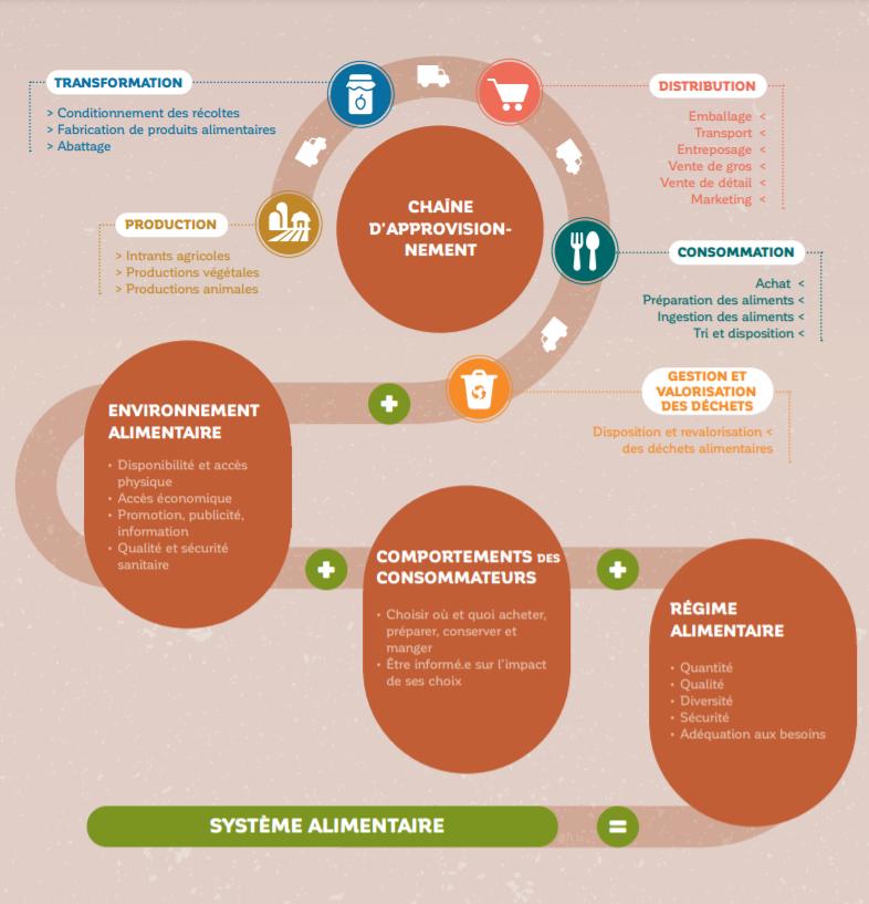 Schéma Système alimentaire