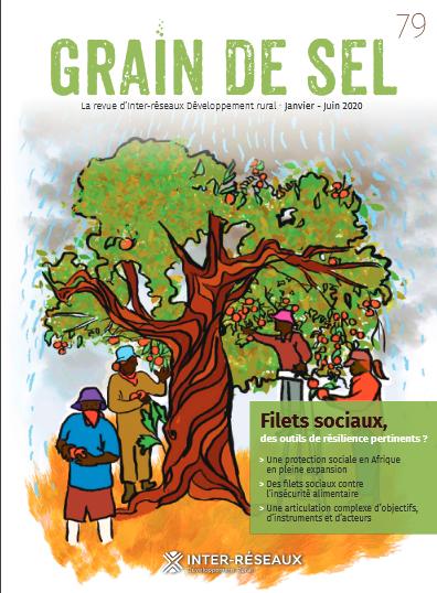 Grain de Sel n°79 - protection sociale